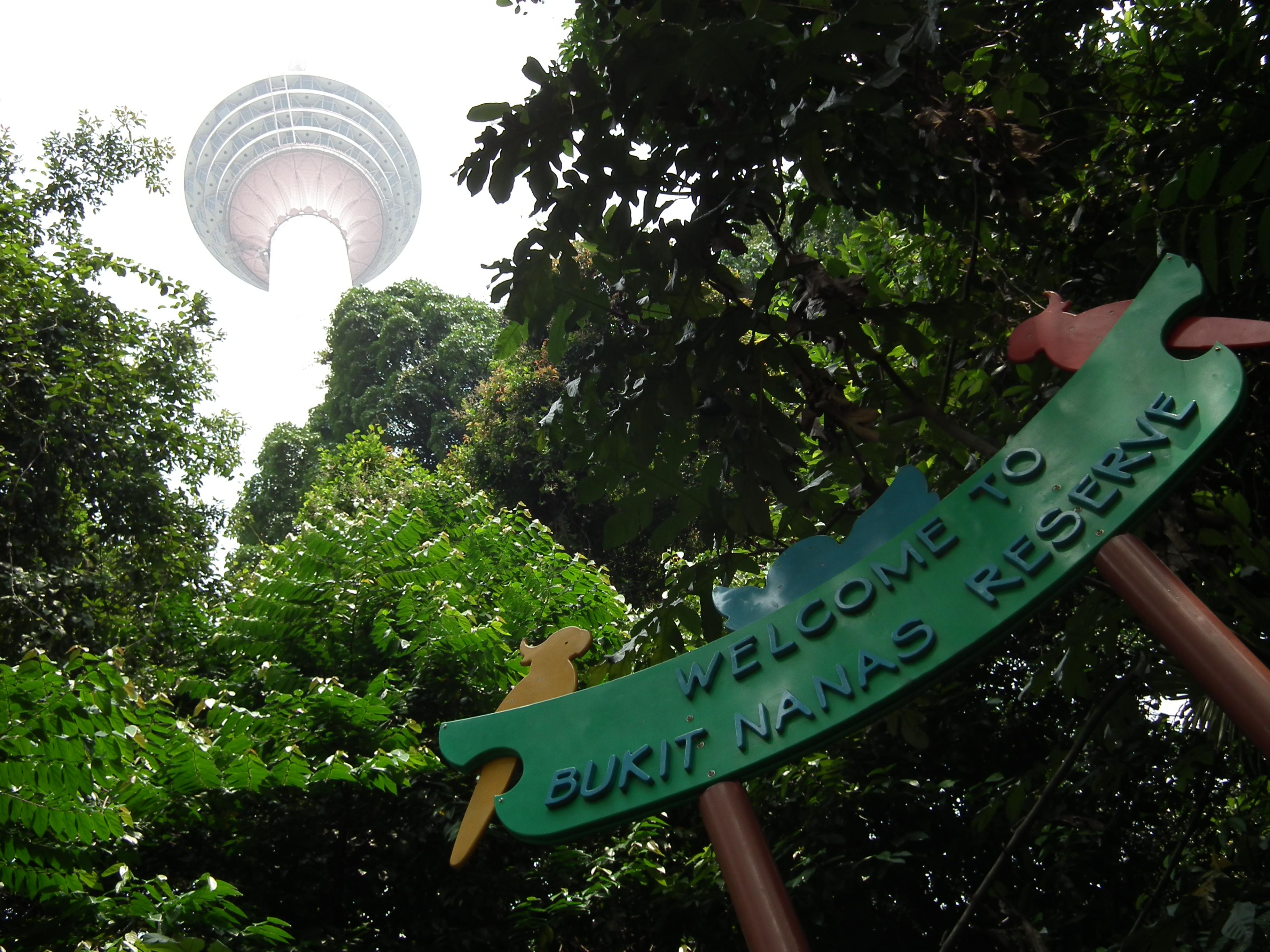 Kết quả hình ảnh cho Bukit Nanas