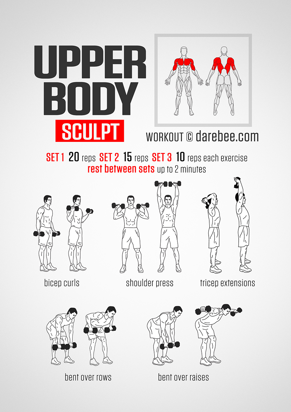 upper body workout neilarey dumbbells